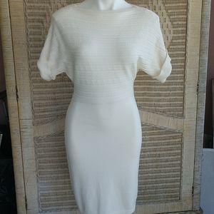 NWT Ralph Lauren Cotton Knit Sheath Dress